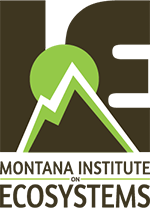 Montana Institute on Ecosystems Logo